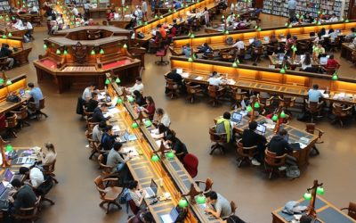 How to Deal With Language Barriers When Studying Abroad?