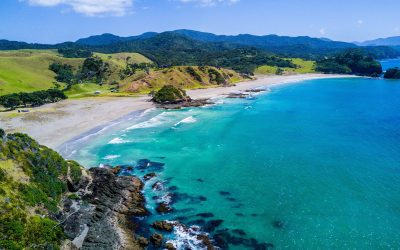 Here Are Some Lesser Known Facts About New Zealand!