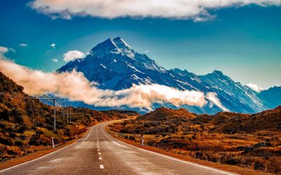 Working Holiday Visa New Zealand: All You Need To Know