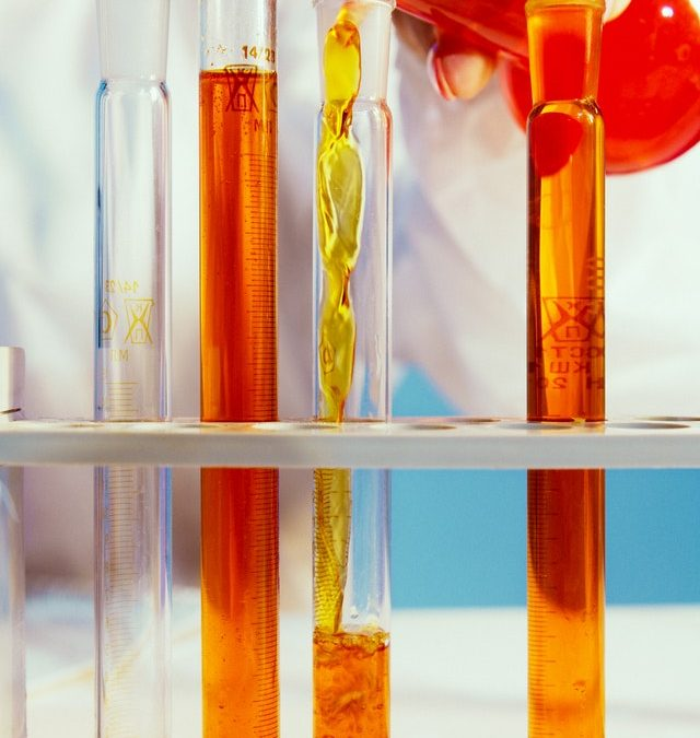 MS In Biotechnology Abroad: Everything To Know